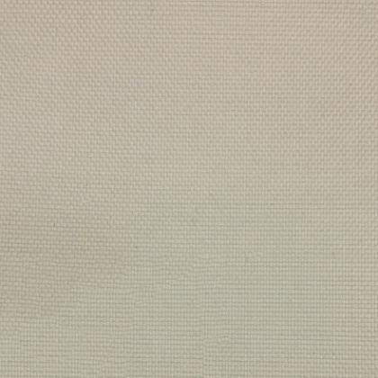 Linen Texture Iv